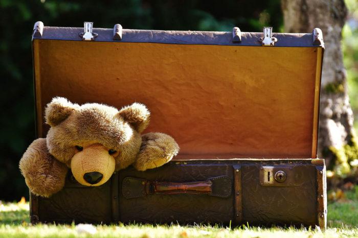 Teddy in Luggage