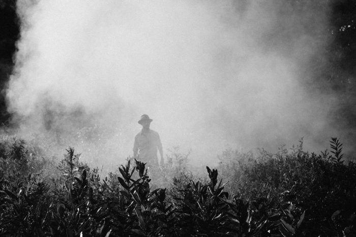 Man in the Chemical Fog of Insect Repellant