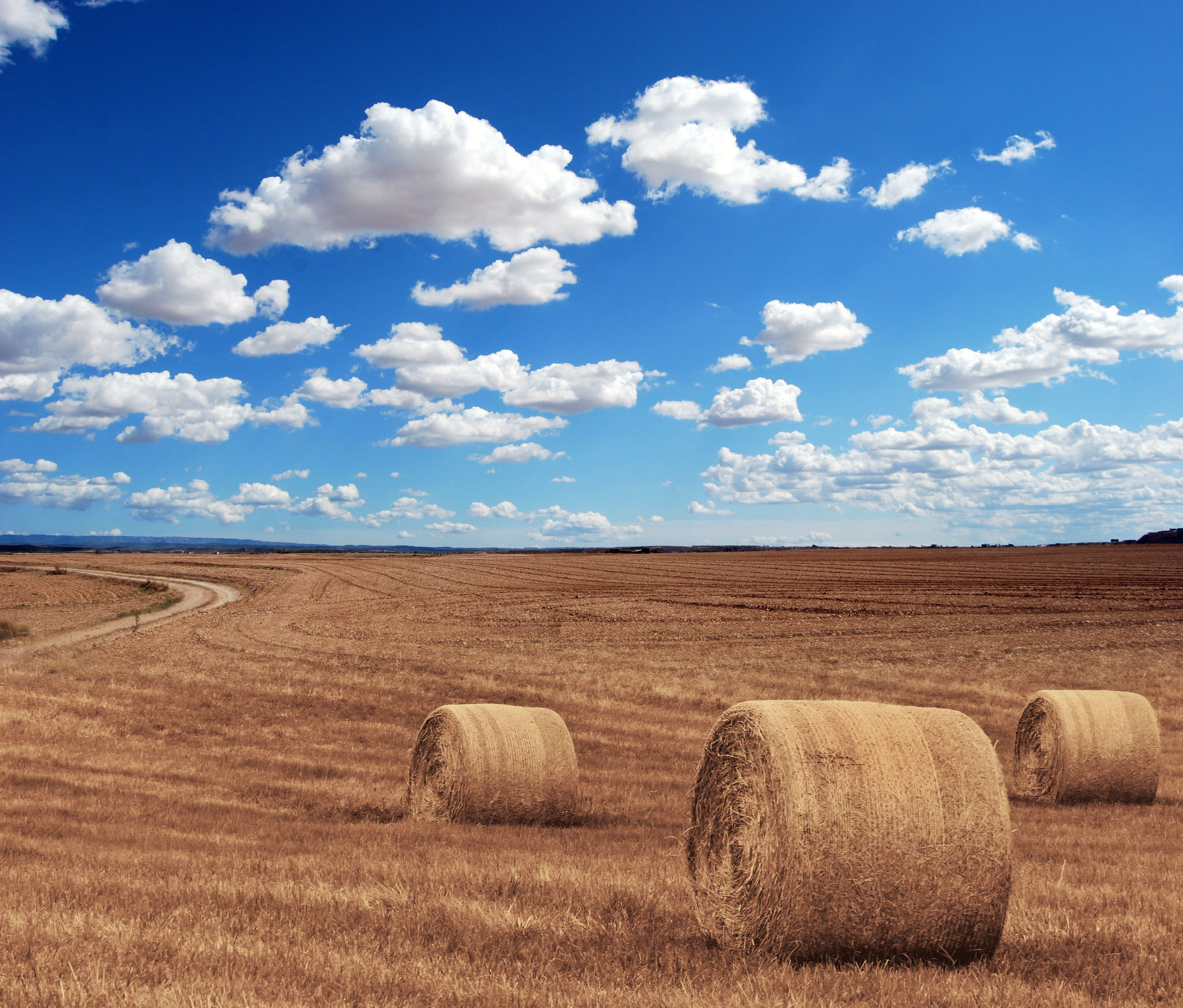 Farm Land with Hay and Blue Sky